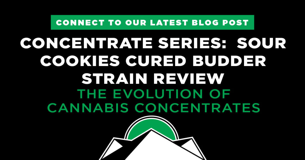 concentrate series - sour cookies cured budder